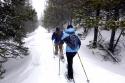 Alpine Peaks Real Estate Homes for Sale